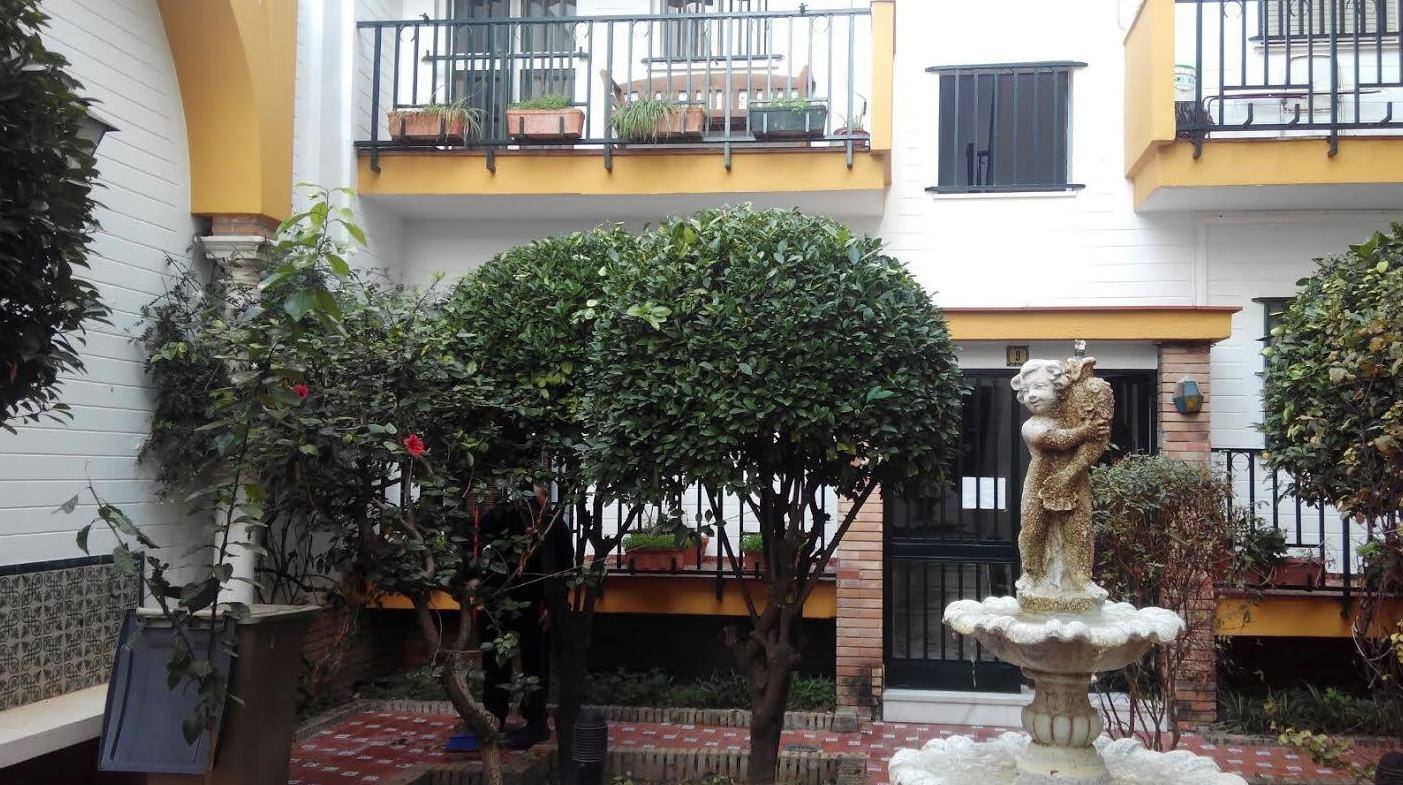 Mantenimiento de jardines y edificios Sevilla