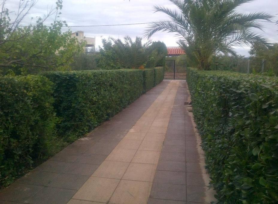 Foto 76 de Jardines (diseño y mantenimiento) en Valencia | Jardinería Vicente Salcedo
