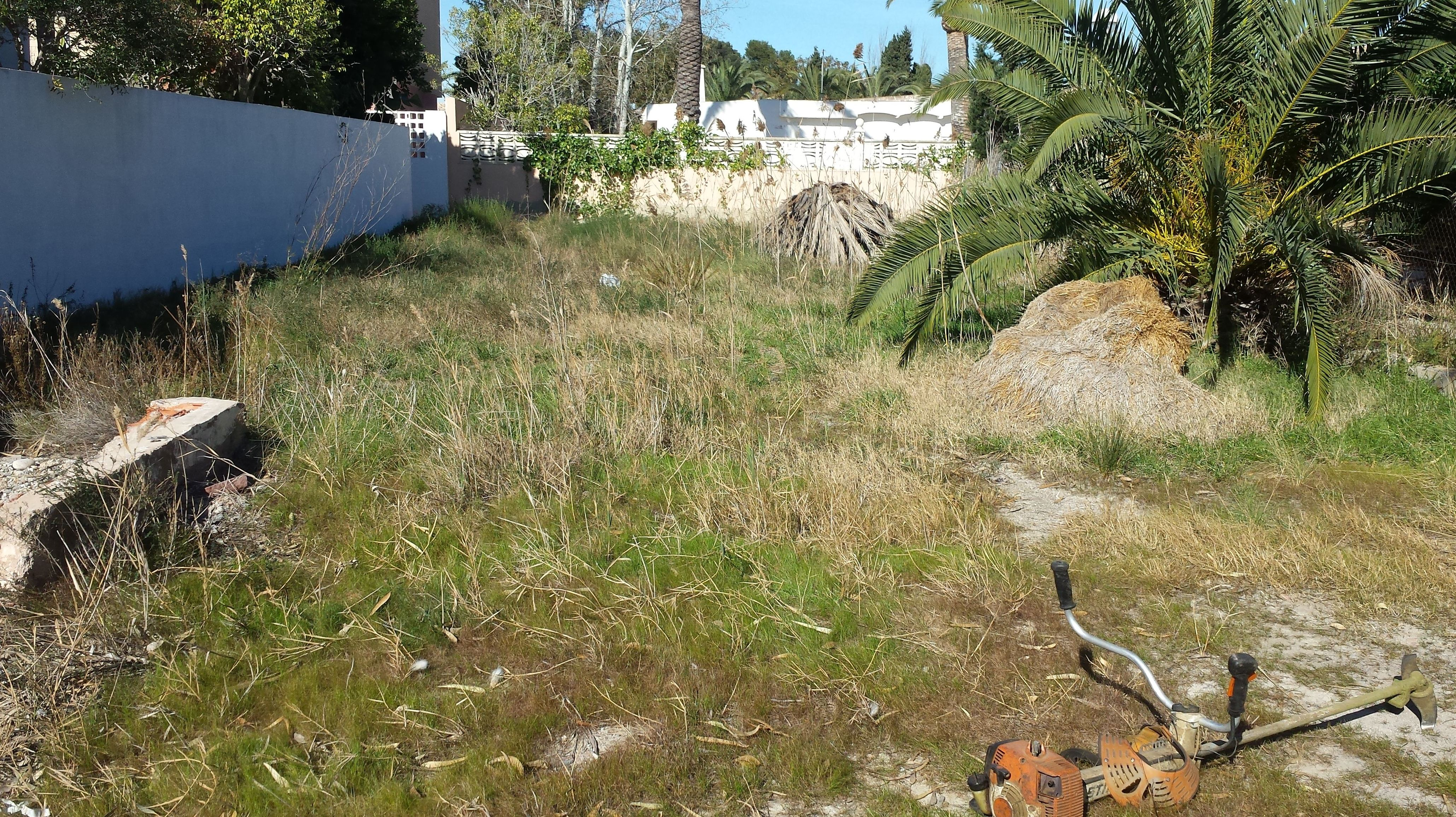 Foto 173 de Jardines (diseño y mantenimiento) en Valencia | Jardinería Vicente Salcedo