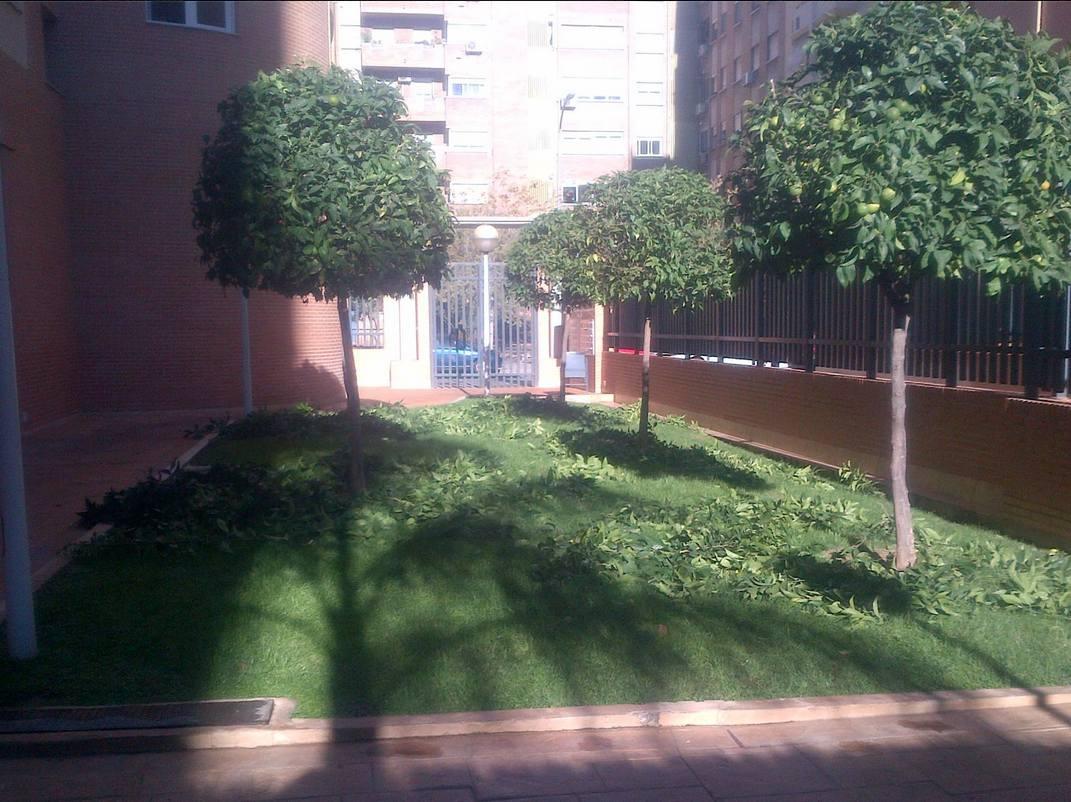 Foto 83 de Jardines (diseño y mantenimiento) en Valencia | Jardinería Vicente Salcedo
