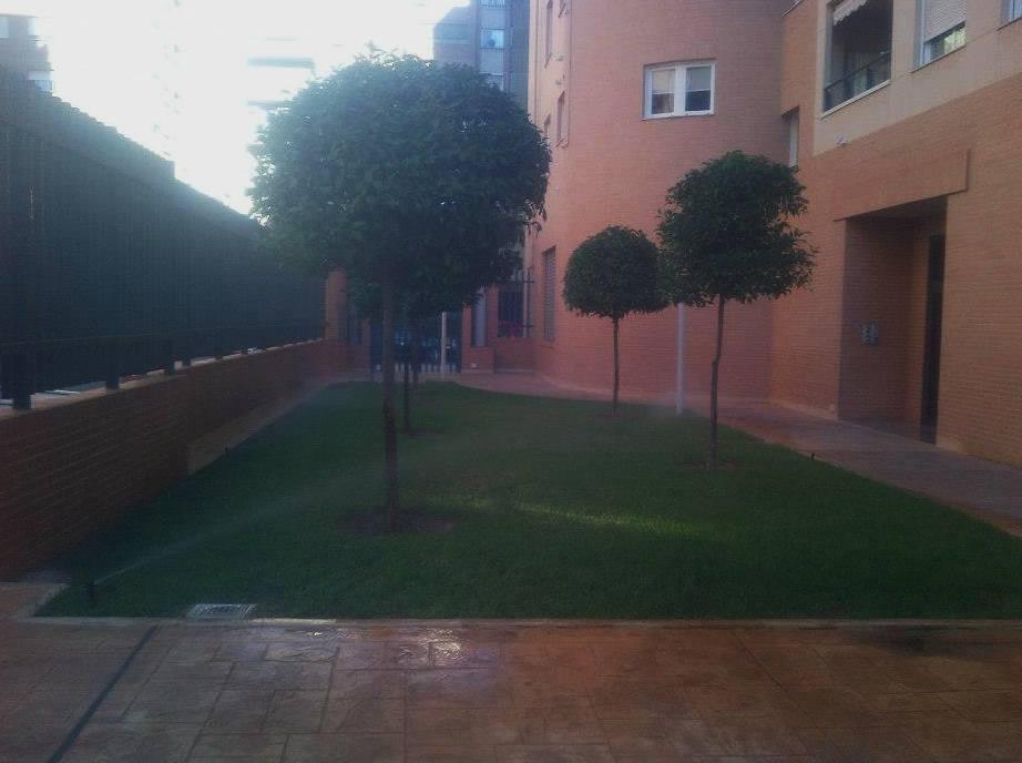 Foto 90 de Jardines (diseño y mantenimiento) en Valencia | Jardinería Vicente Salcedo