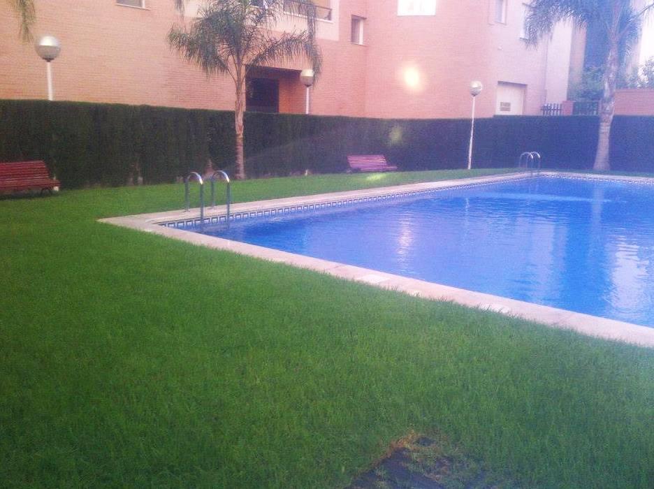 Picture 99 of Jardines (diseño y mantenimiento) in Valencia | Jardinería Vicente Salcedo