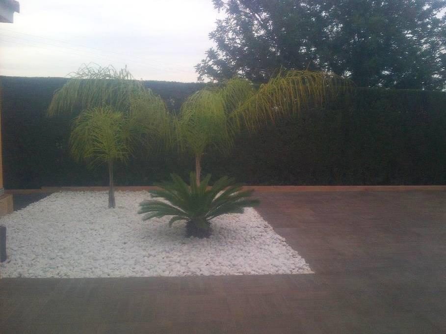 Foto 85 de Jardines (diseño y mantenimiento) en Valencia | Jardinería Vicente Salcedo