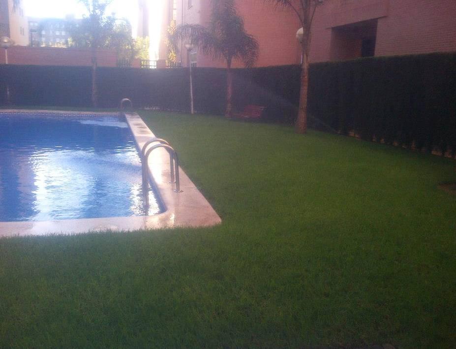 Foto 88 de Jardines (diseño y mantenimiento) en Valencia   Jardinería Vicente Salcedo