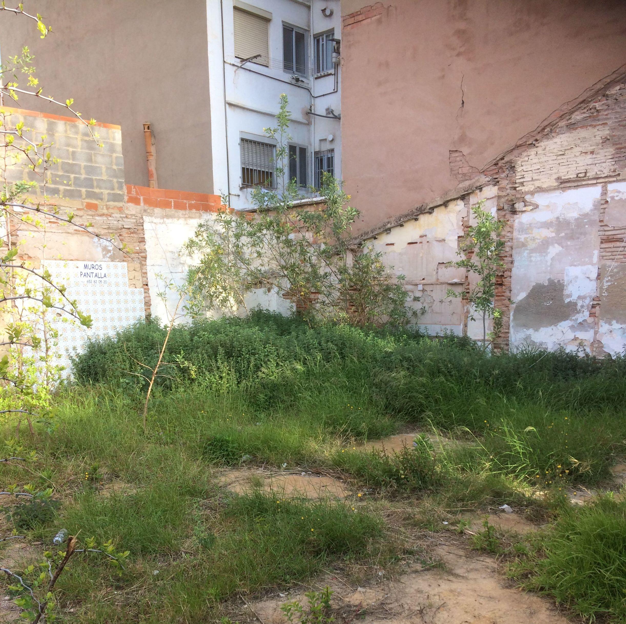 Foto 20 de Jardines (diseño y mantenimiento) en Valencia | Jardinería Vicente Salcedo