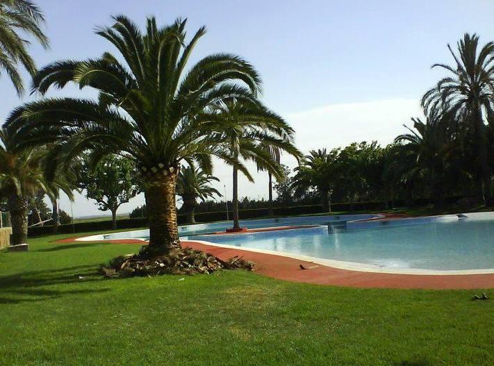 Foto 111 de Jardines (diseño y mantenimiento) en Valencia | Jardinería Vicente Salcedo