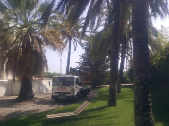 Foto 103 de Jardines (diseño y mantenimiento) en Valencia | Jardinería Vicente Salcedo