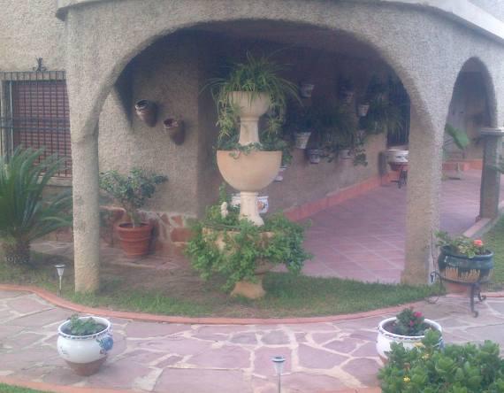 Foto 120 de Jardines (diseño y mantenimiento) en Valencia | Jardinería Vicente Salcedo