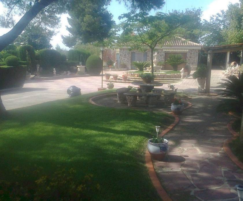Foto 133 de Jardines (diseño y mantenimiento) en Valencia | Jardinería Vicente Salcedo