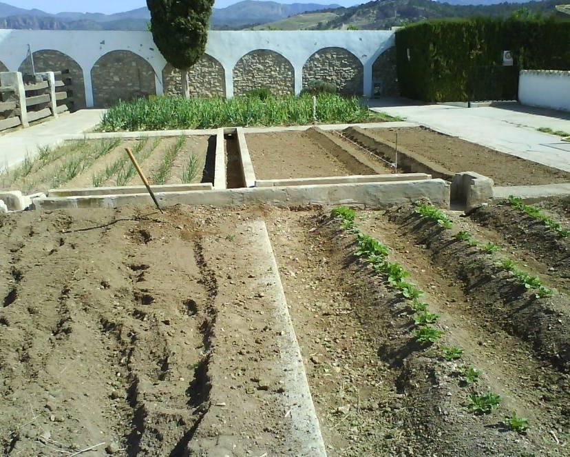 Foto 146 de Jardines (diseño y mantenimiento) en Valencia | Jardinería Vicente Salcedo
