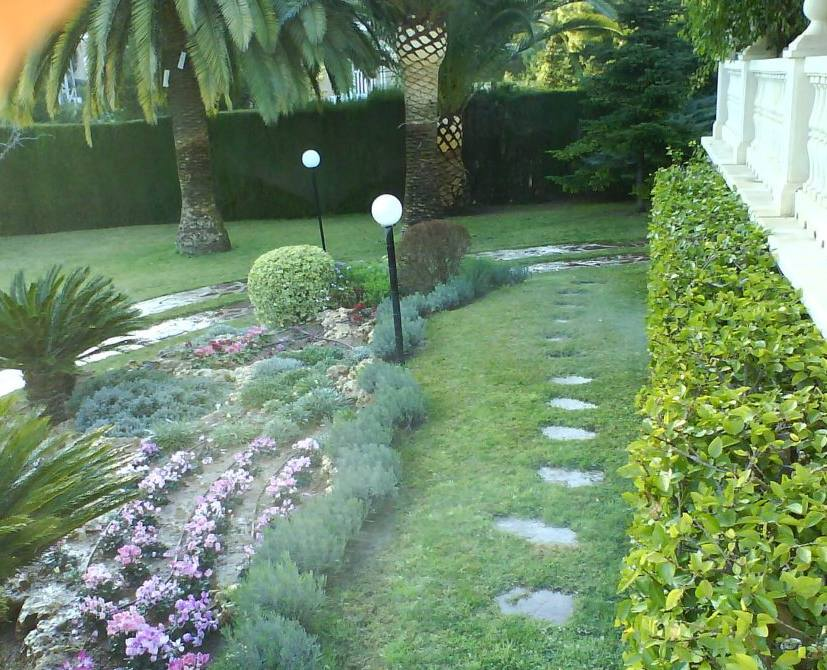 Foto 134 de Jardines (diseño y mantenimiento) en Valencia | Jardinería Vicente Salcedo