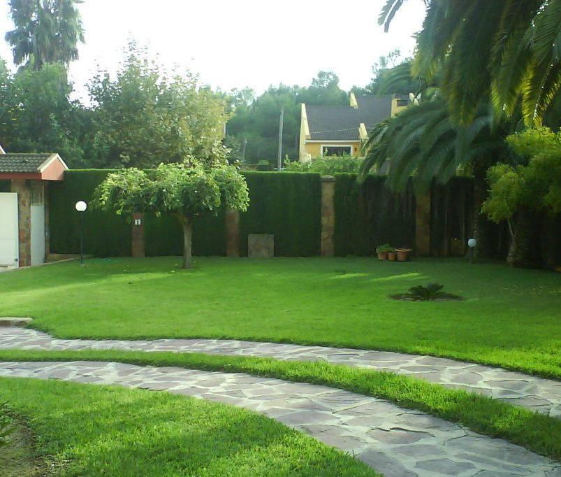 Foto 150 de Jardines (diseño y mantenimiento) en Valencia   Jardinería Vicente Salcedo