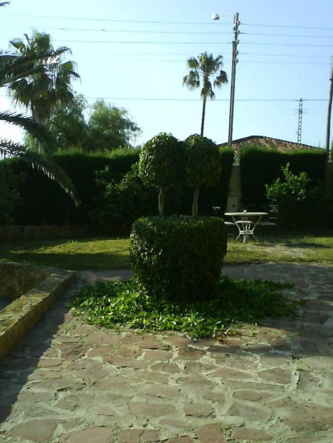 Foto 131 de Jardines (diseño y mantenimiento) en Valencia | Jardinería Vicente Salcedo