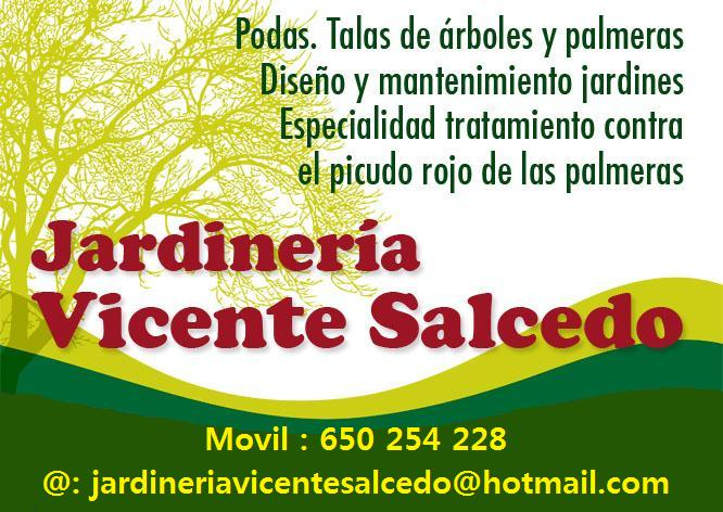 Foto 53 de Jardines (diseño y mantenimiento) en Valencia | Jardinería Vicente Salcedo