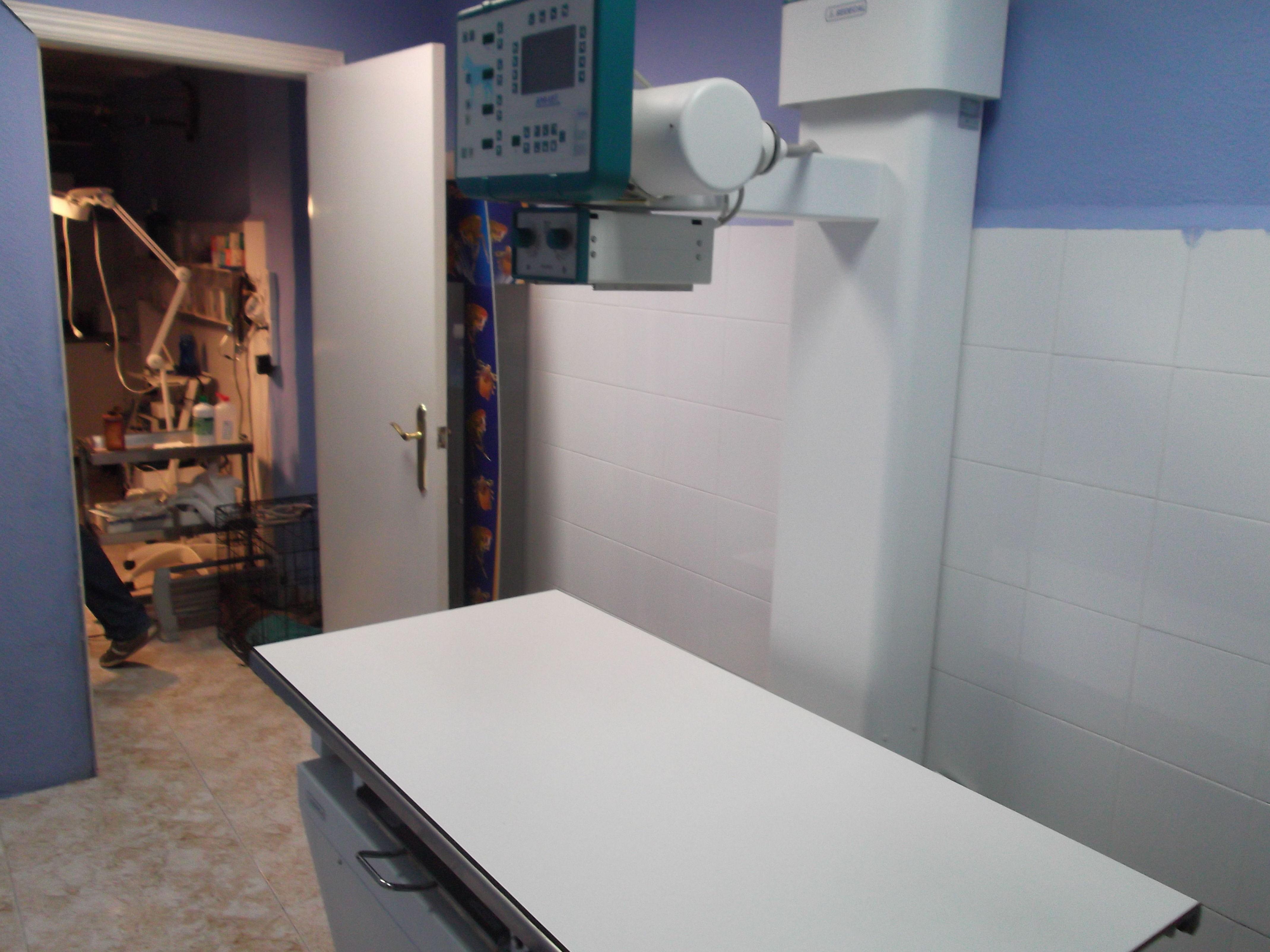 Servicio veterinario con rayos x y ecografías