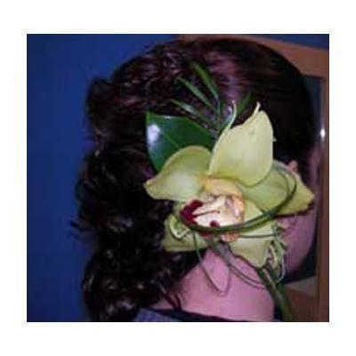 Moldeador  (incluye peinado): Peluquería  de Peluquería Susana Herrera