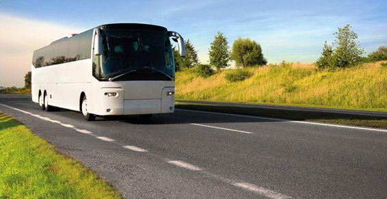 Autocares para bodas: Autocares de Baby Bus