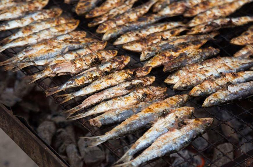 SARDINADA: Servicios de Shargar Catering