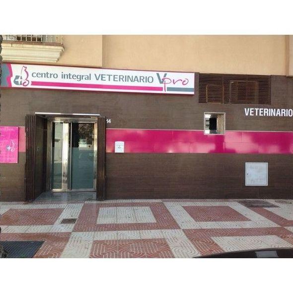 Nuestros valores: Servicios de Centro Integral Veterinario VPRO