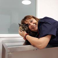 Cirugía veterinaria Caldes de Montbui