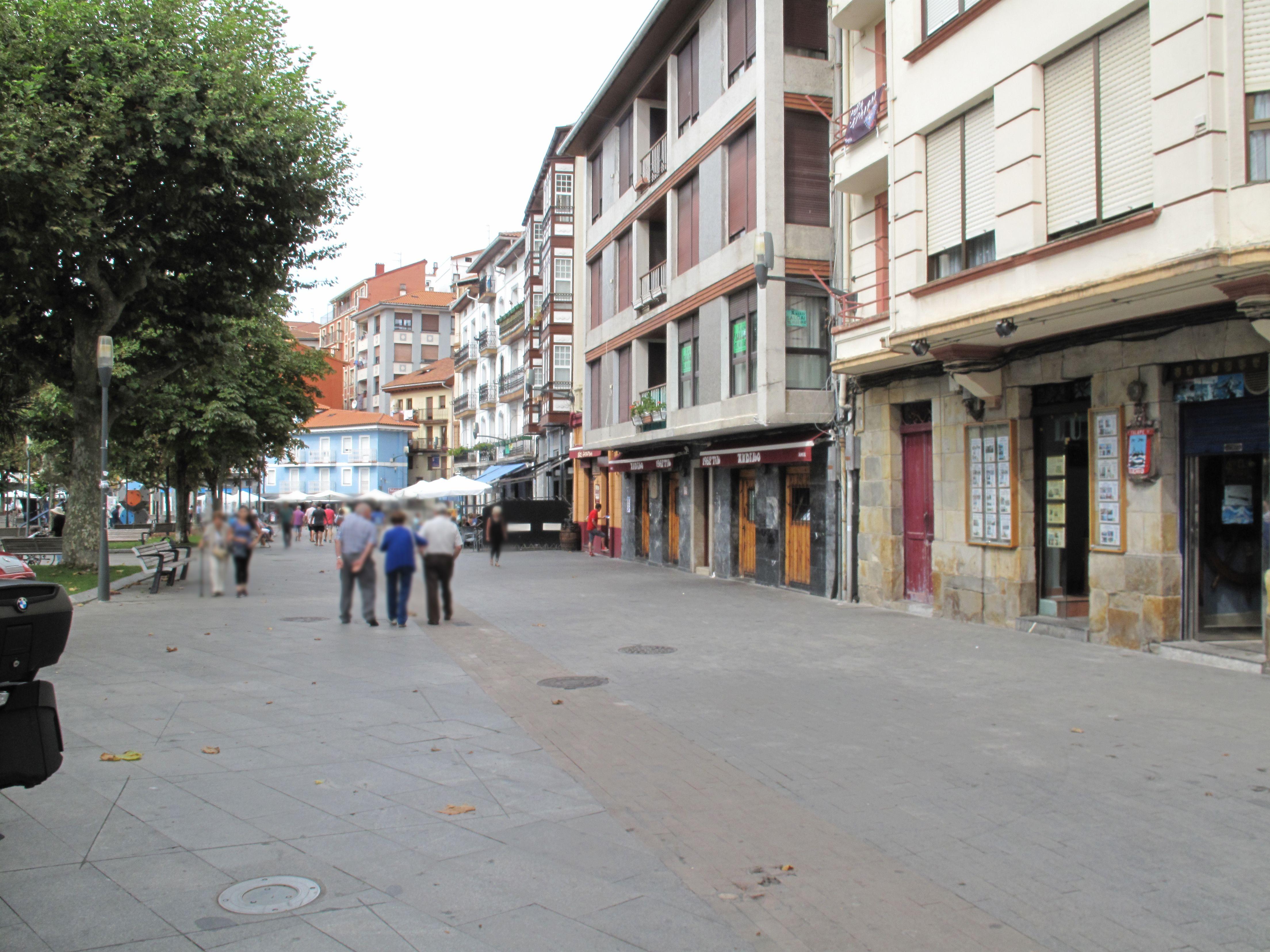 Inmobiliaria para toda la zona de Urdaibai