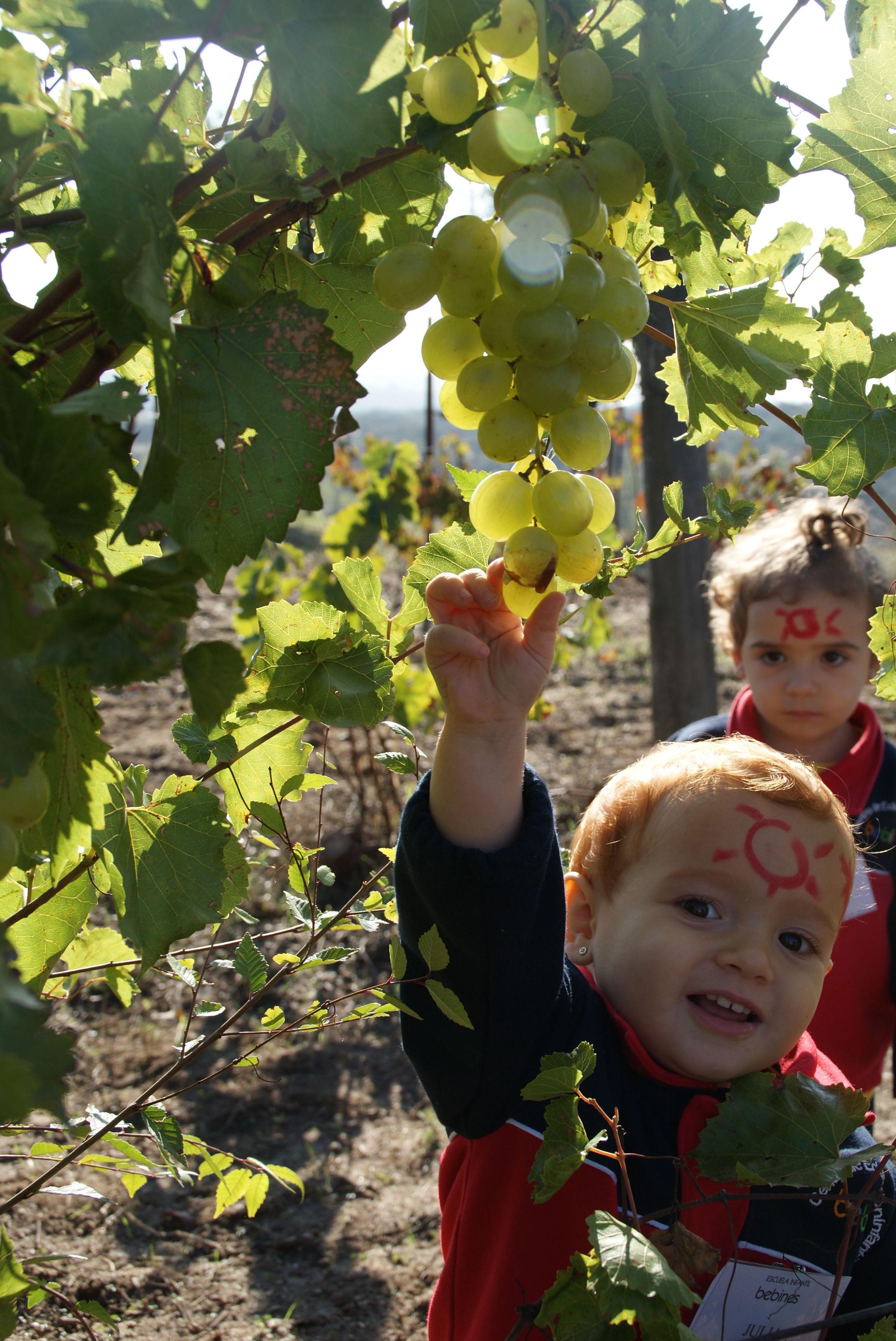Foto 13 de Escuela infantil para niños de 0 a 3 años en Getafe | Escuela Infantil Bebines
