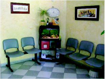 Foto 5 de Veterinarios en Vitoria-Gasteiz | Arabacan