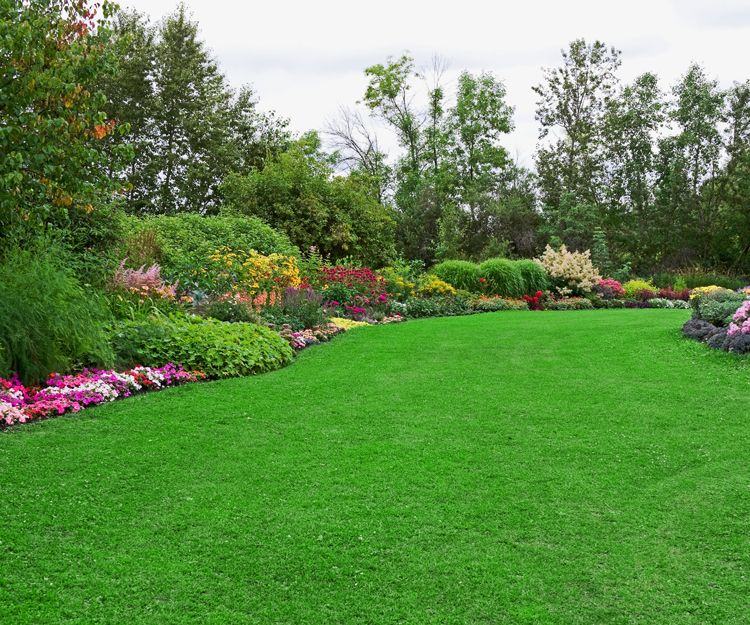 Foto 3 de Diseño y mantenimiento de jardines en El Poblenou ...