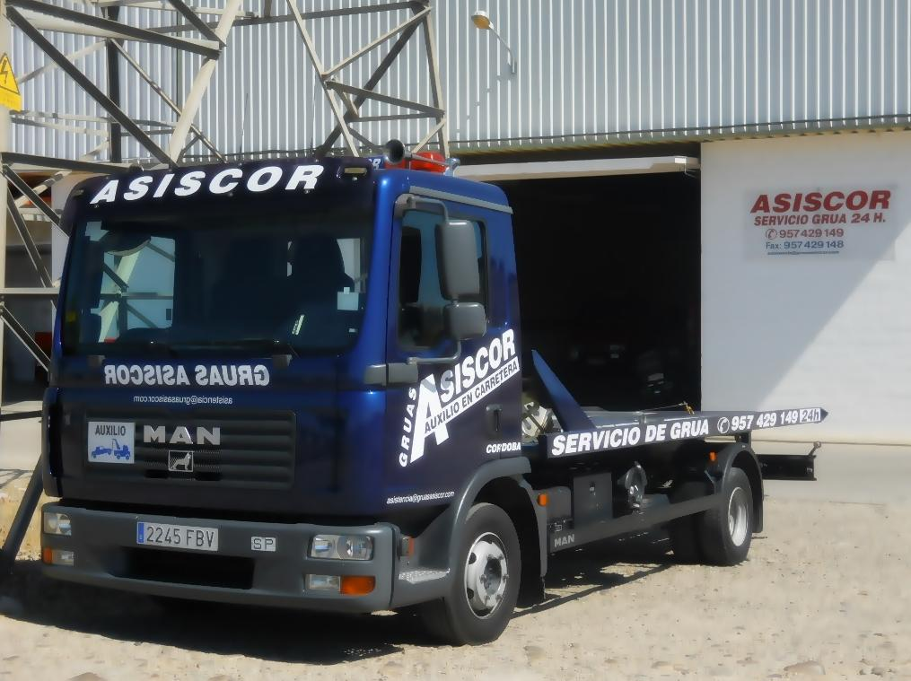 Grúas Asiscor