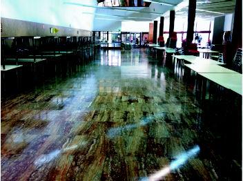 Foto 9 de Limpieza (empresas) en  | Limpiezas Vimaram, S.L.