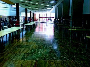 Foto 8 de Limpieza (empresas) en  | Limpiezas Vimaram, S.L.
