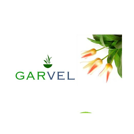 Clientes: Servicios de Pavimentos Garvel