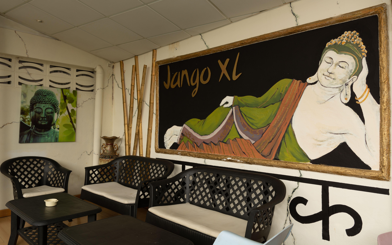 Decoración terraza Jango XL