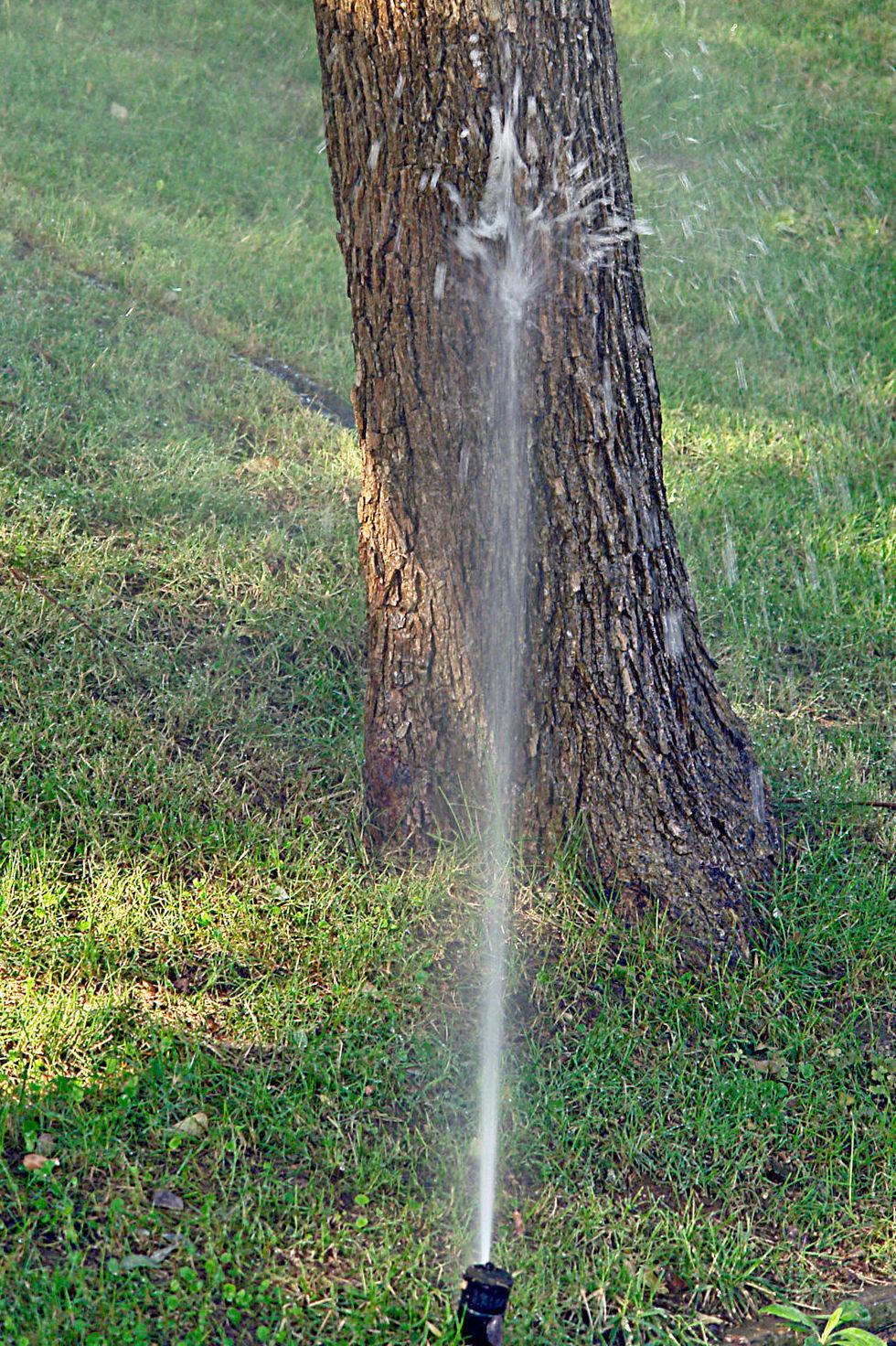 Montaje de sistemas de riego automático en Sevilla