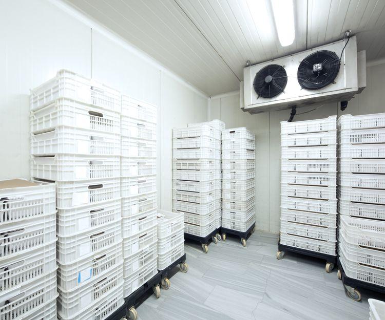 Empresa de cámaras frigoríficas en Madrid