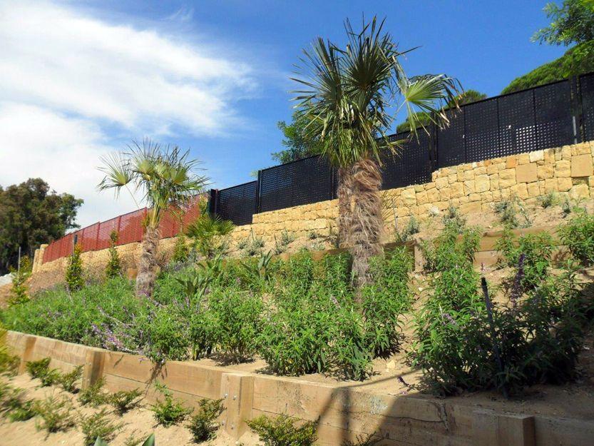 Realización de jardines en San Roque, Cádiz