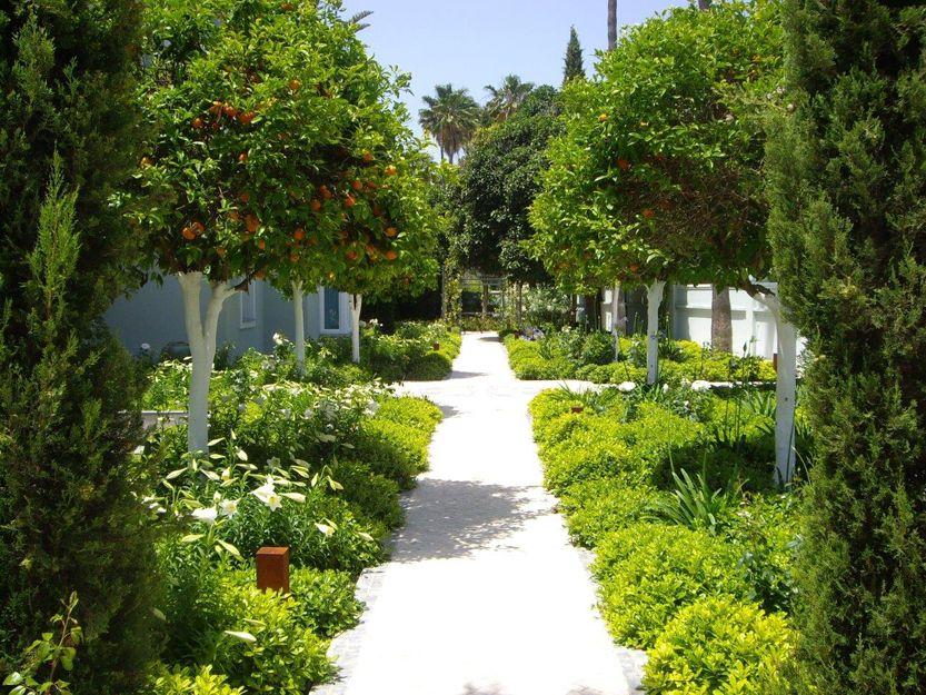 Mantenimiento de jardines en San Roque, Cádiz