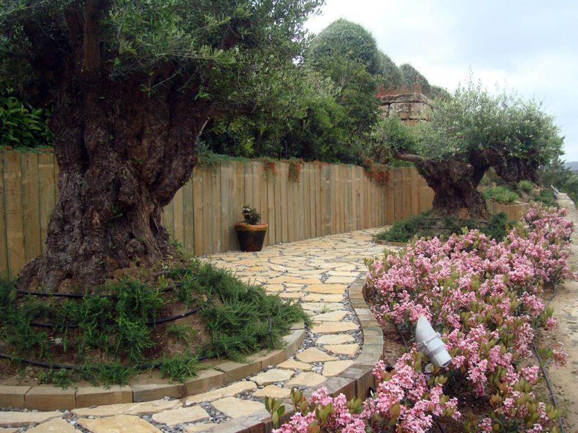 Trabajos de jardinería en San Roque, Cádiz