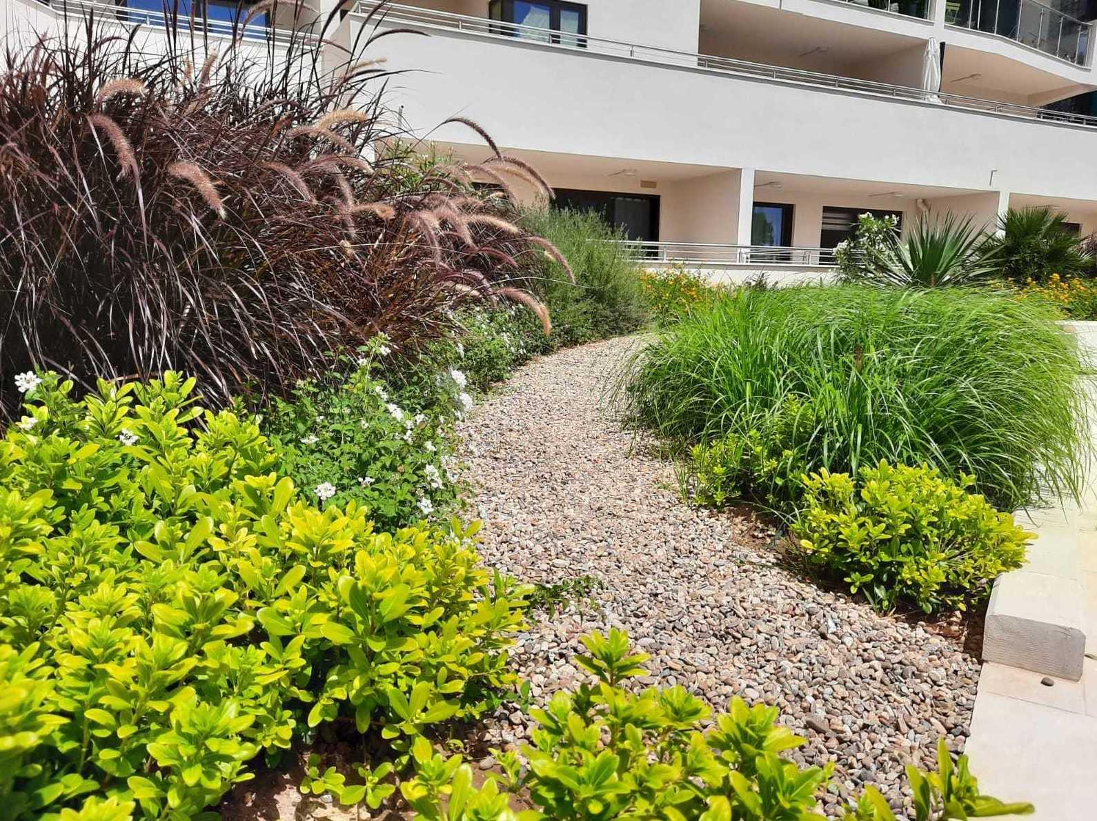 Foto 2 de Diseño y mantenimiento de jardines en San Roque | Sotojardín