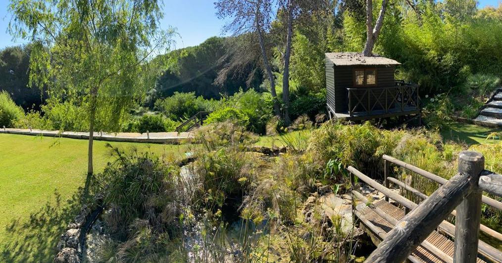 Foto 4 de Diseño y mantenimiento de jardines en San Roque | Sotojardín