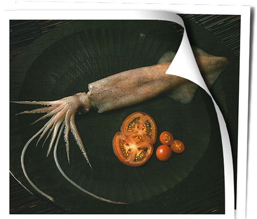 Pesquerías Marinenses, venta de calamar