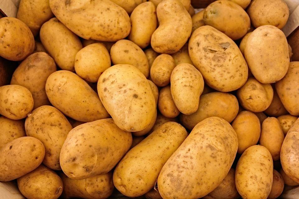 Patatas: Productos y servicios de Ecozara