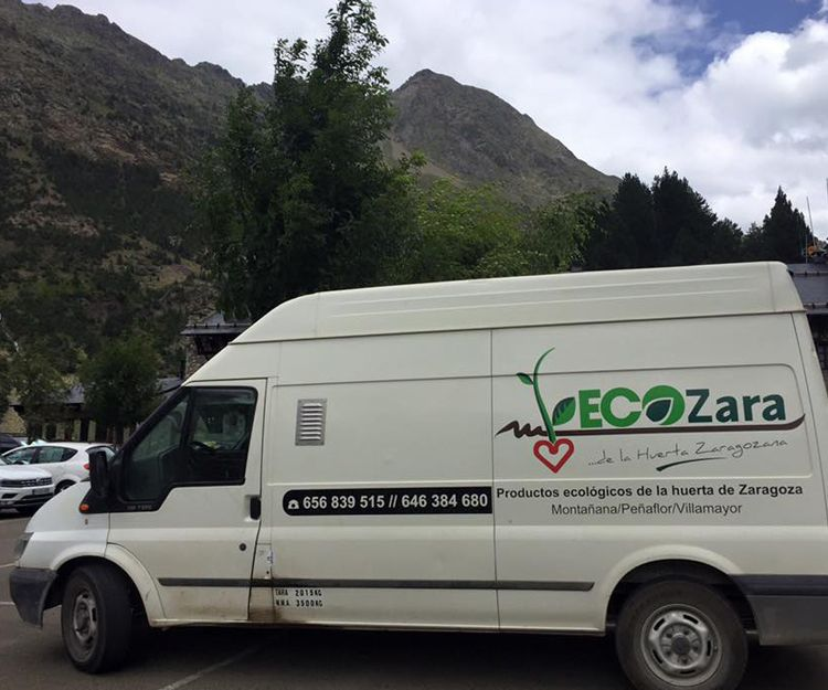 Comprar verdura ecológica en Zaragoza