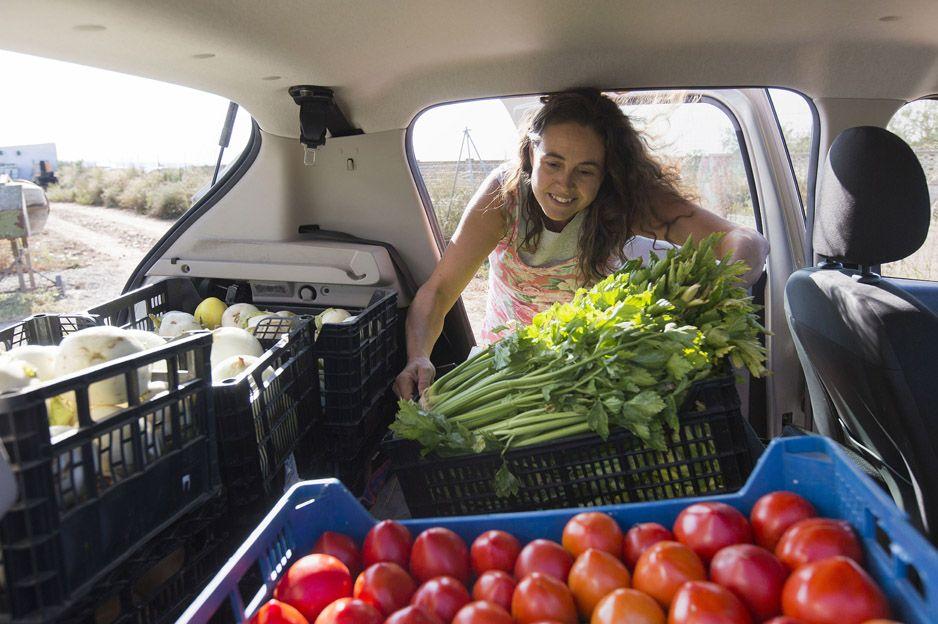 Distribución de alimentos ecológicos en Zaragoza