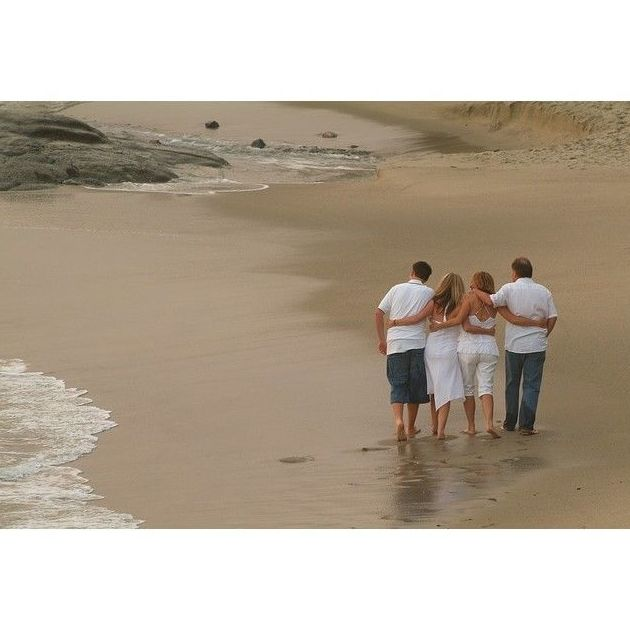 Terapia familiar: Terapias de Berta Llopis Psicología