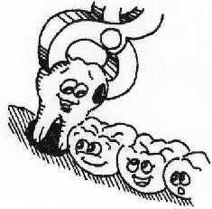 EXTRACCIONES: SERVICIOS de Clínica Dental Basauri