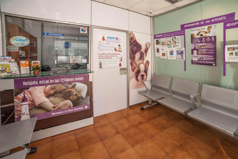 Sala de espera de la clínica veterinaria