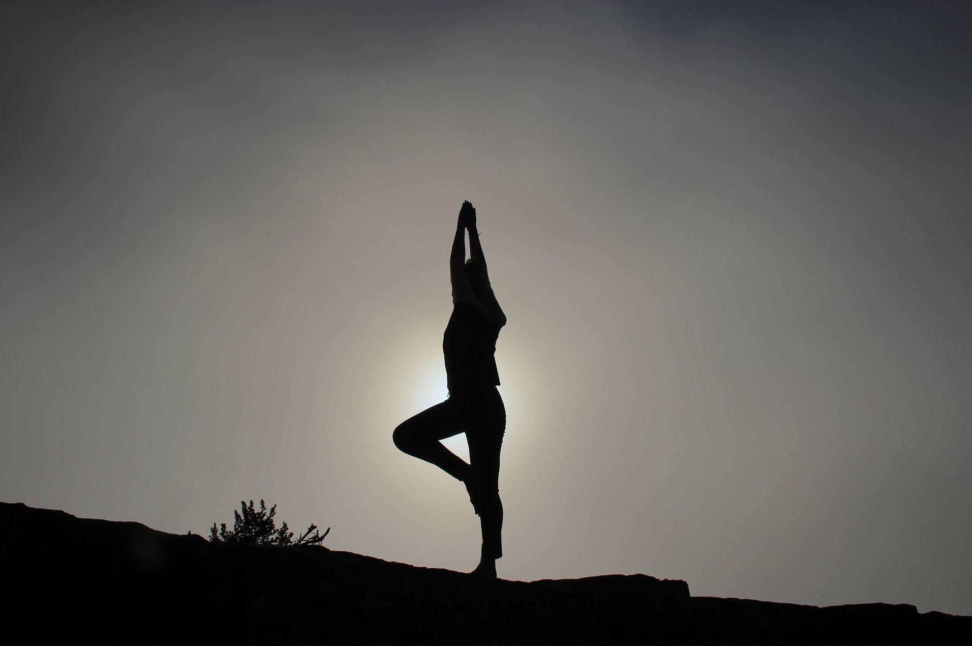 Nuestros docentes e instructores: ¿Qué hacemos?  de Centro Milarepa yoga y psicoterapia