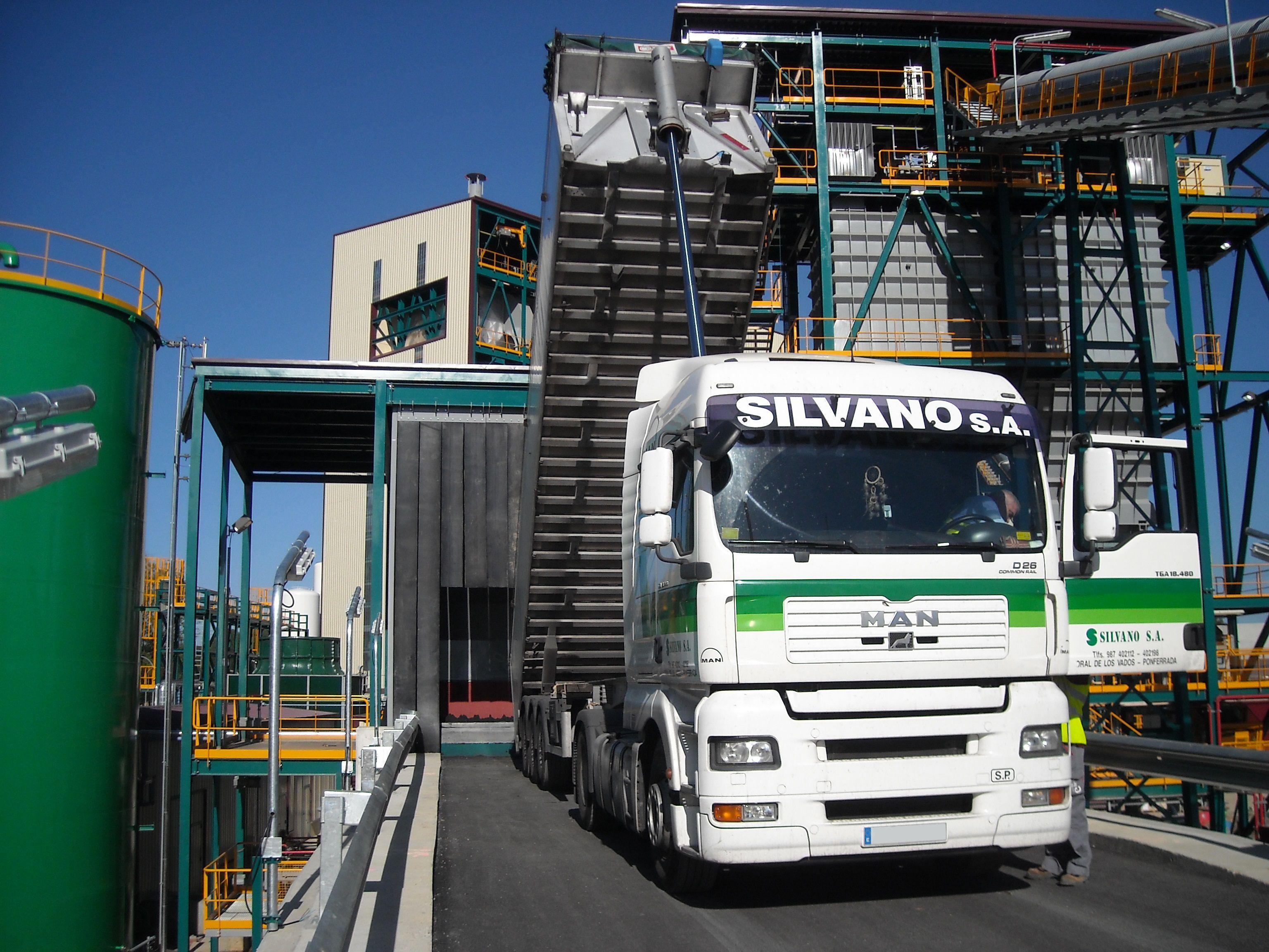 Carbones Silvano