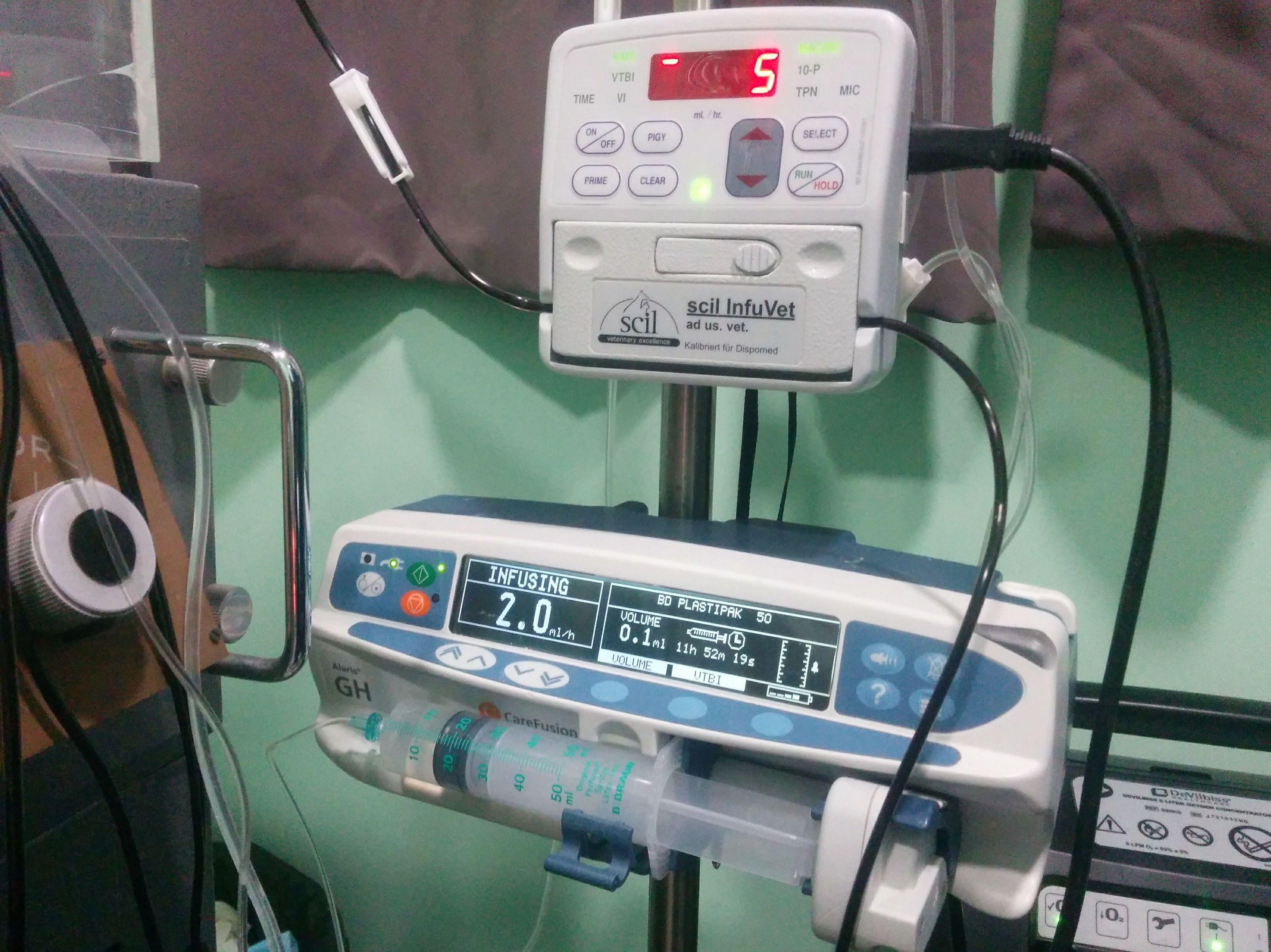 administración de transfusión sanguínea